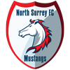 North Surrey FC Logo